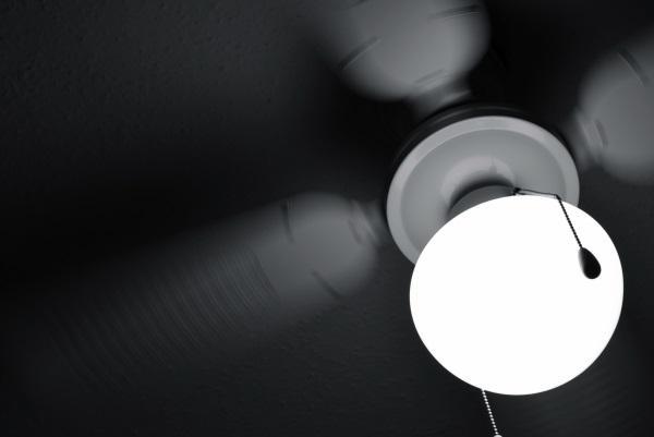 A Ceiling Fan for All Seasons